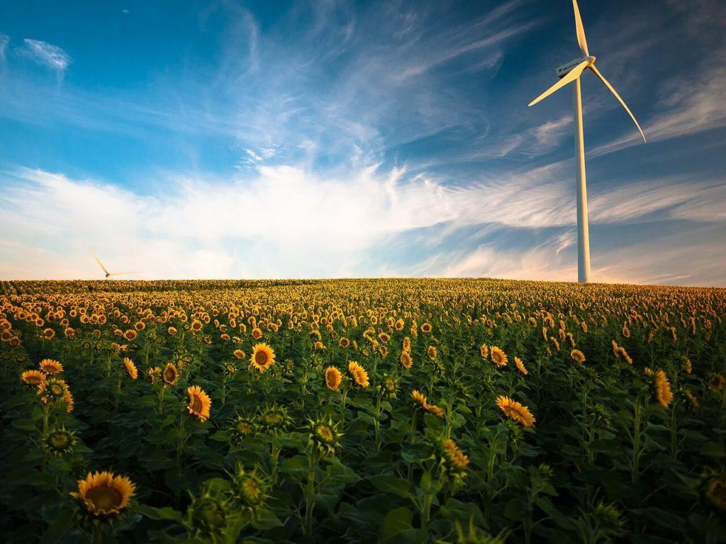 039 01 Invertir En Acciones De Energía Renovable
